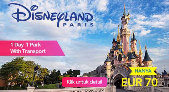 Disneyland® Paris: 1 Day 1 Park with Transport